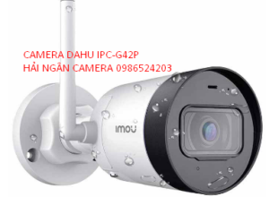 CAMERA WIFI DAHUA 4Mb IPC-G42P